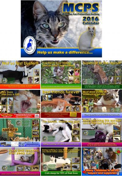 2016-cat-calendar-1