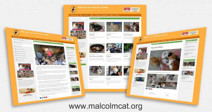 New Malcolm Cat Website 2015