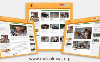 New Malcolm Cat Website 2015