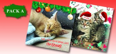 Christmas Cards Pack A