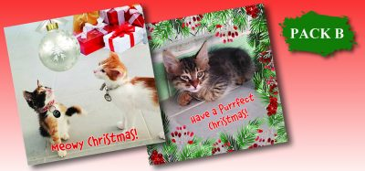 Christmas Cards Pack B